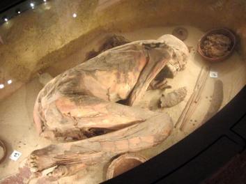 Museo egizio, fossile umano
