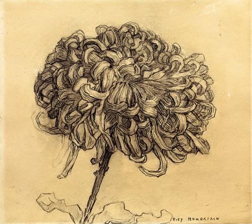 Piet-Mondrian-crisantemo