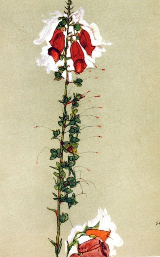 egonschiele fiori