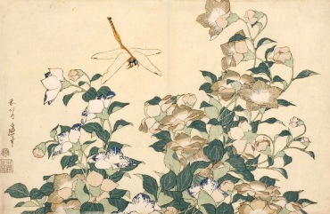 katsushika-hokusai-campanule-e-libellula-dalla-serie-grandi-fiori-1833-1835-circa