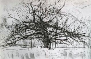 Piet Mondrian, tree
