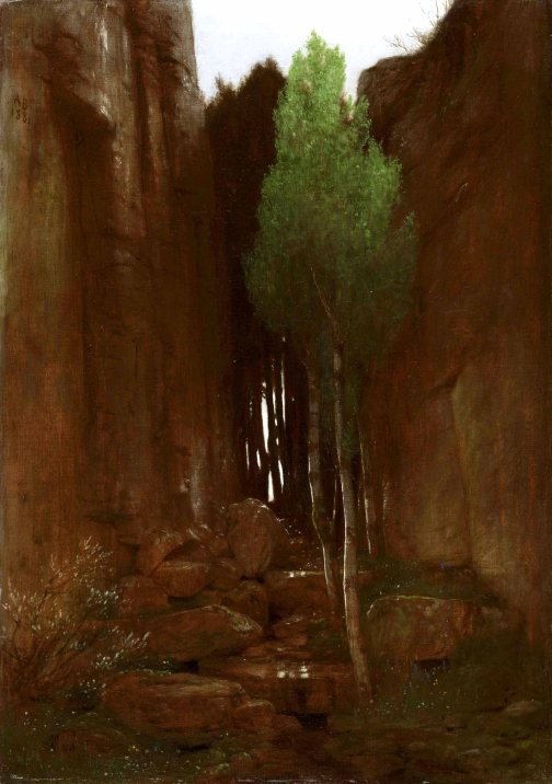 Spring in a Narrow Gorge (Quell in einer Felsschlucht)