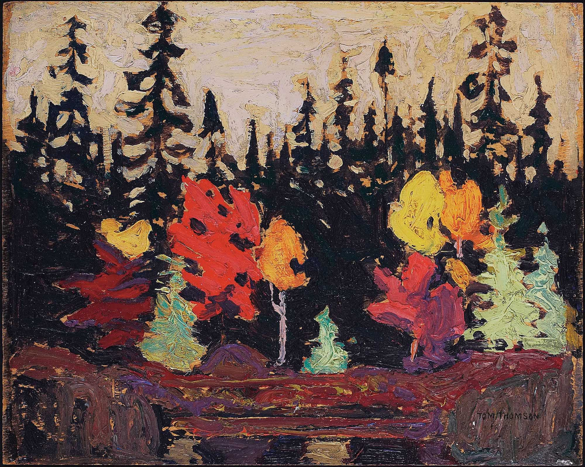 Tom_Thomson_Black_Spruce_and_Maple