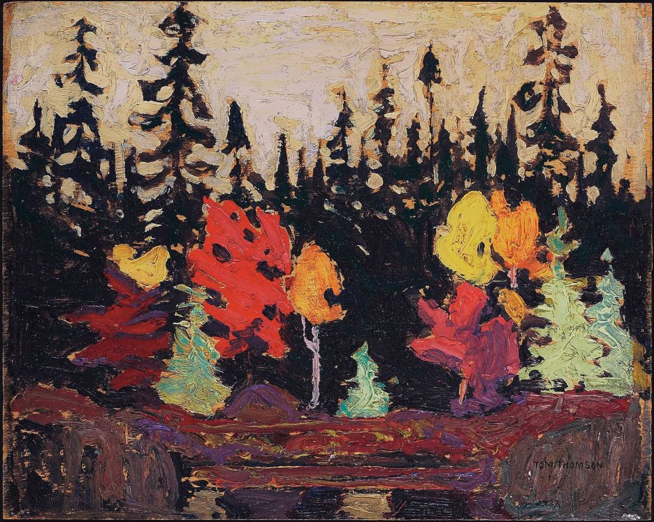 Tom Thomson, Black spruce and maple.