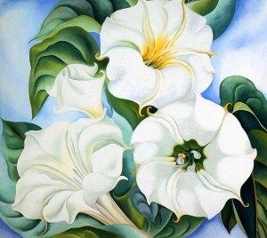 Georgia O'Keeffe stramonio img fiori
