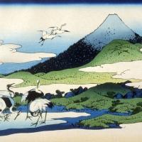 Tra inverno e primavera: 5 haiku nell'attesa della nuova stagione