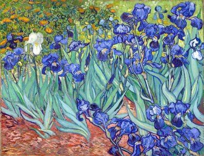 Vincent Van Gogh, Iris 2