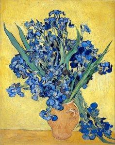 Vincent Van Gogh Iris img