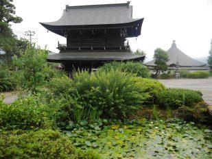 giappone_takayama_daiohji_temple2
