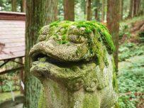 giappone_takayama_higashiyama_hakusan_shrine