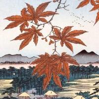 L'autunno in 5 haiku: come vedevano i giapponesi questa stagione di passaggio?