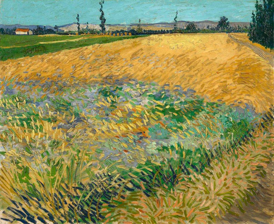Vincent Van Gogh, Campo di grano, 1888