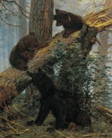 Ivan Shishkin, Mattino in una pineta, 1886 - dett 03