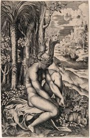 Marco Dente, Venere ferita da una spina